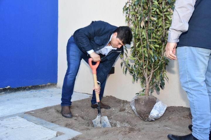 Como parte del acta, también se procedió a plantar especies arbóreas en el ingreso al predio.
